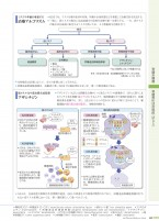病5-2版_11_骨髄系腫瘍.indd