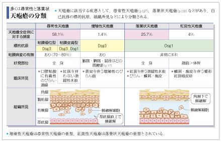 天疱瘡の分類